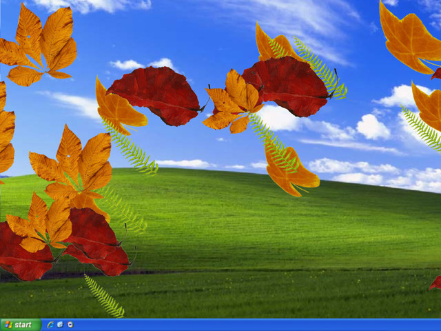 EIPC Autumn Leaves Screensaver