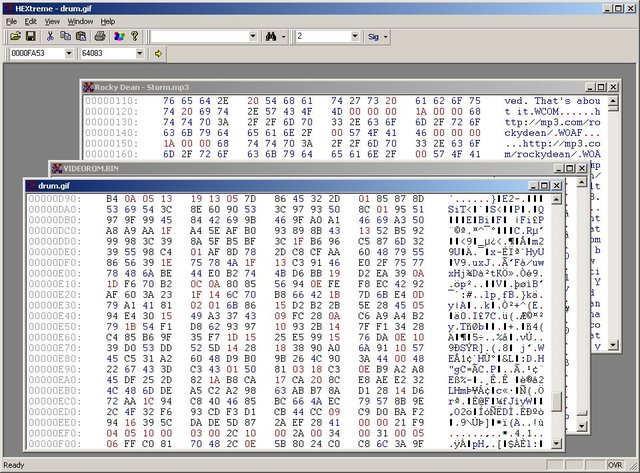 HEXtreme Hex Editor for Windows