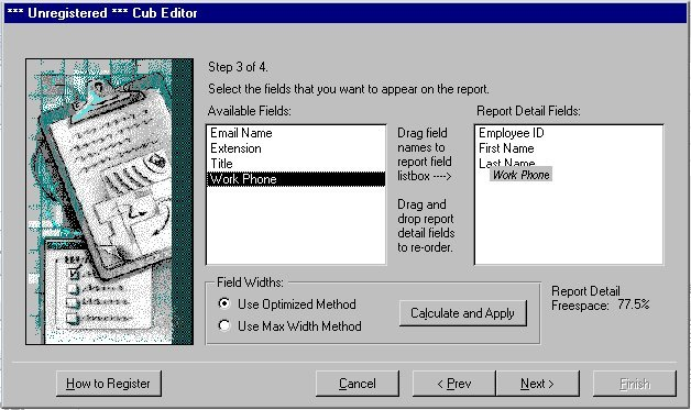 Cub Editor for MS Access 97