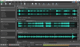 Wavepad Audio and Music Editor Pro