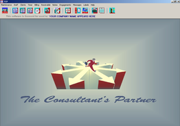 The Consultants Partner